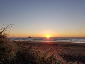 Muriwai beach campsite