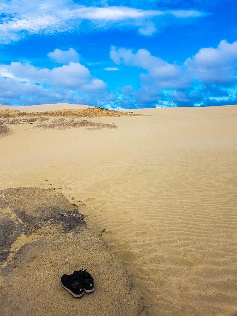 Giant Sand Dunes, Northland, New Zealand