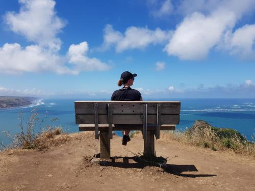 Lemming's bench lookout